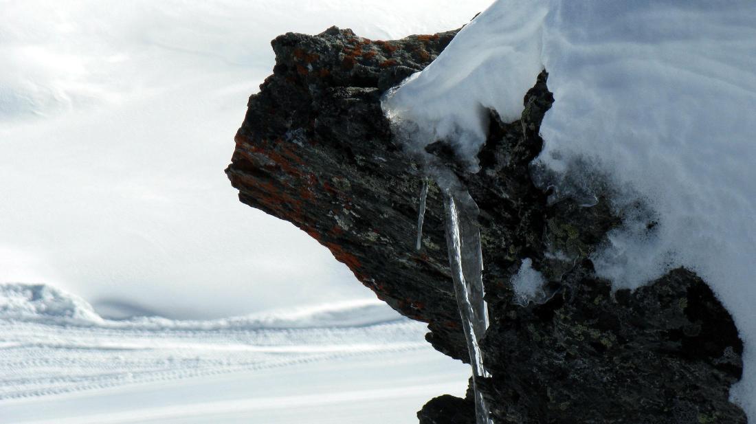 Zermatt Fuoripista